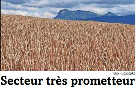 la gruyère : Fribourg mise gros sur son secteur agroalimentaire