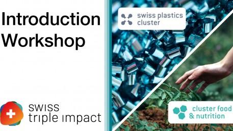 Atelier d'introduction au programme Swiss Triple Impact