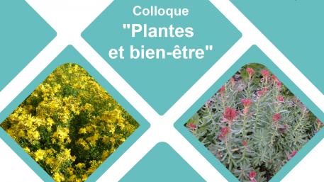 Colloque: Plantes et bien-être