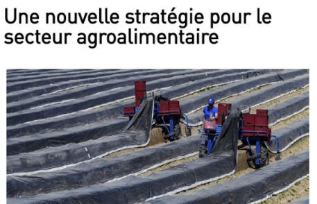 la liberté : Une nouvelle stratégie pour le secteur agroalimentaire