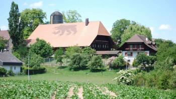 Berner Bauern Verband