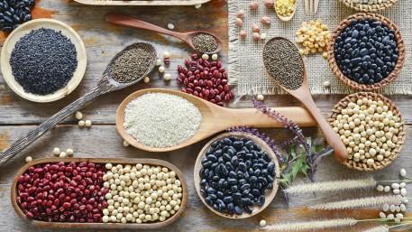 Von Nusskäse und Erbsenfleisch - Pflanzenproteine im Nahrungsmittelsystem