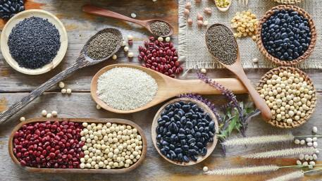 Pflanzliche Proteine in der Ernährung – Herausforderungen und Lösungsansätze