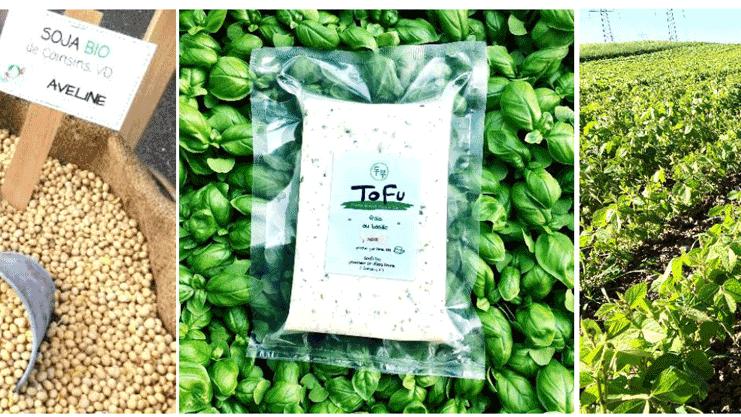 Du soja au tofu: de la culture bio et régionale au produit gastronomique