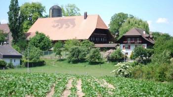Berner Bauernverband